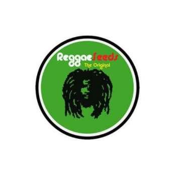 graines Régulières Dancehall de collection