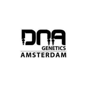graines Féminisées Dna Mix Pack de collection