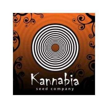 graines Féminisées Kannabia Special de collection