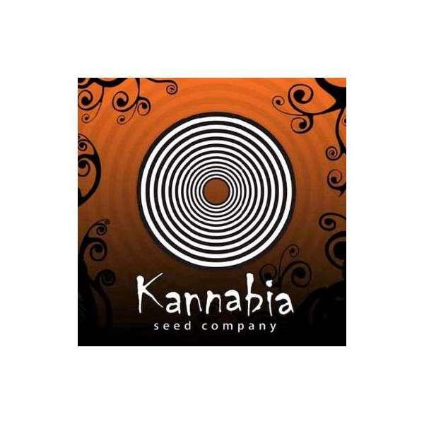 graines Féminisées Karamelo de collection