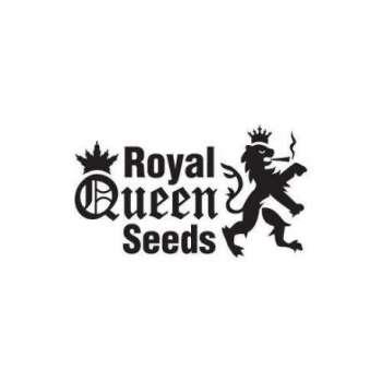 graines Féminisées Royal Moby de collection
