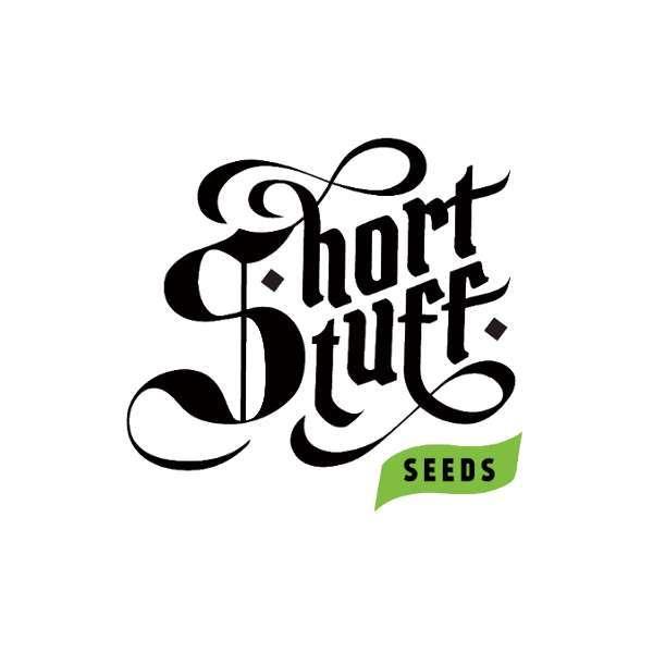 graines Féminisées Short Stuff 1 de collection