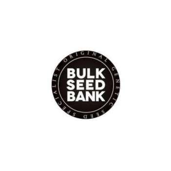 graines Féminisées Sour Diesel de collection