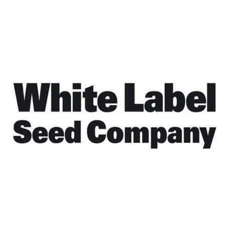 White Label Rhino