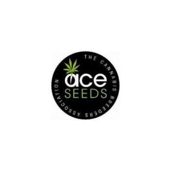 graines Régulières Ace Mix de collection
