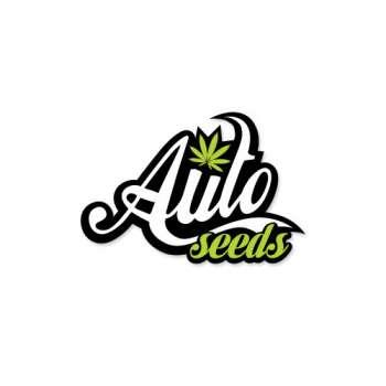 graines Auto Floraison Auto Chemdog de collection