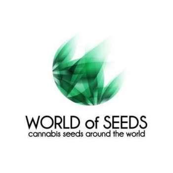 graines Régulières Brazil Amazonia Wos de collection