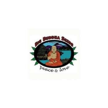 graines Féminisées Buddha Haze de collection