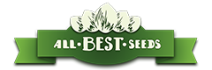 All Best Seeds - Graines de collections